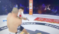Pelea MMA