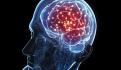 El cerebro es el microprocesador de los humanos, asegura neuropsiquiatra