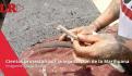 Manifestantes piden legalización de la mariguana