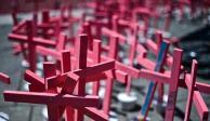 Feminicidios-cruces rosas