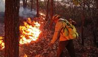Incendio forestal-Jalisco