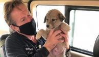 El exmarino británico se niega a salir de Afganistán en un vuelo sin sus 200 perros y gatos