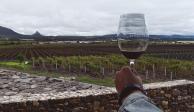 Uno de los  viñedos  que incluye  el tour en Querétaro.