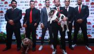 Bulldogs de Naucalpan presentan estrategia para temporada 2020