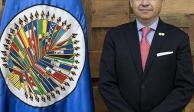Eligen al mexicano Joel Hernández presidente de la CIDH