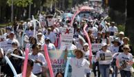 Hila Puebla marchas  para exigir seguridad
