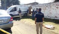 Hallan 24 cuerpos desmembrados en fosa clandestina en Michoacán