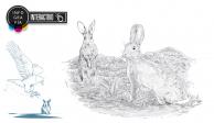 Interactivo: Catalogan en peligro de extinción… ¡al conejo!
