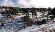La Rosilla en Durango, el lugar más frío de México, registra -16 grados