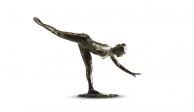 Danza y neurociencia: coreografía neuronal