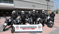 Gendarmería evita cientos de irregularidades por uso de suelo en MH