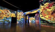 Muestra de Van Gogh y recitales, en cuarentena por coronavirus