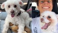 Juanpa Zurita dedica emotivo mensaje a su perrita fallecida Puca (FOTOS)