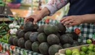 Aguacate eleva su precio en el país, cuesta entre 70 y 80 pesos por kilo