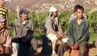 Defenderá SRE a trabajadores mexicanos en EU, aunque sean indocumentados