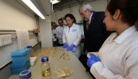 Ciencias Genómicas cumple 15 años de impartirse con clase mundial