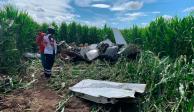 Desplome de avioneta en Chihuahua deja al menos cuatro muertos