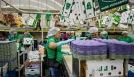 Presume Michoacán crecimiento en empleo