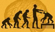 Implantan genes humanos en monos y se vuelven más inteligentes
