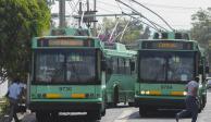 Con adjudicación directa se decide  proyecto para Trolebús elevado
