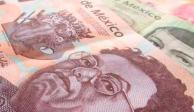 Fija Inegi en 89.49 pesos valor de UMA