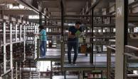 Hasta nuevo aviso, la Biblioteca Vasconcelos permanecerá cerrada