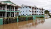 FOTOS: Cocodrilos invaden las calles de Australia tras inundación