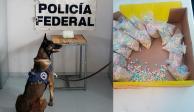 Encuentran droga colada entre dulces regionales con destino a EU