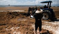 Recolectan 10 toneladas de sargazo en costas de Quintana Roo
