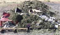 Fiscalía incinera más de dos toneladas de narcóticos en Zacatecas