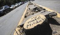 Va rehabilitación en Xoco, pague  o no Mítikah, promete Sedema