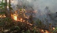 Finlandia propone a la UE prohibir importaciones de carne de Brasil tras incendios