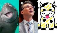 Sergio Mayer, vaquita amarilla
