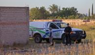 Exhuman 31 cuerpos de fosa clandestina hallada en Jalisco
