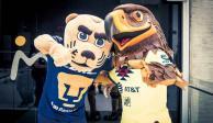 América y Pumas se unen por un clásico sin violencia