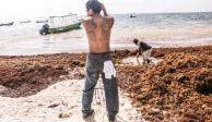 Gobierno de Quintana Roo quiere mil mdp para combatir al sargazo
