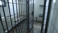 """Trasladan a Guanajuato a """"El Mawuicho"""", presunto asesino de israelíes en Artz"""