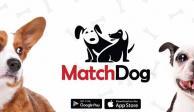 """""""Matchdog"""", la app para encontrarle pareja a tu mascota"""