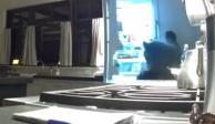 VIDEO: Oso entra a casa en California para saquear refrigerador
