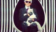 FOTOS: Choupette, la gata que heredará parte de la fortuna de Lagerfeld