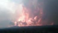 VIDEO: Se registra incendio en Veracruz; desalojan a 2 mil personas