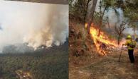 """Se incendia """"bosque protegido"""" en Uruapan, Michoacán"""