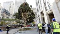 Levantan el árbol de Navidad del Rockefeller Center en Nueva York