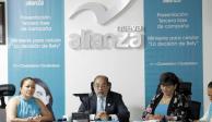 Panal lanza miniserie para promover el voto razonado