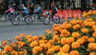 Cerradas avenidas de la CDMX por eventos deportivos y culturales