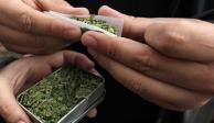 ONG's exigen alejar cannabis de niños en futura legalización
