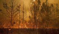 Reportan mil desaparecidos y 74 muertos por los incendios en California