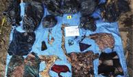 Hallan en fosas de Veracruz 166 cuerpos: FGE