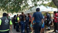 Abejas atacan a asistentes al viacrucis en El Marqués, Querétaro