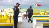 Policía Federal refuerza seguridad en Quintana Roo tras explosión de ferry